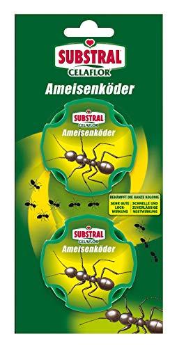Substral Celaflor Ameisen-Köder, zur Bekämpfung von Ameisen im Haus und auf Terrassen mit schneller Nestwirkung, 2 Stck