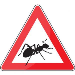 Achtung Ameisen