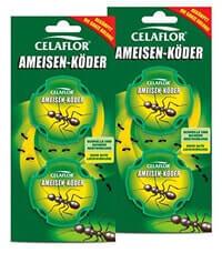celaflor-ameisenfalle